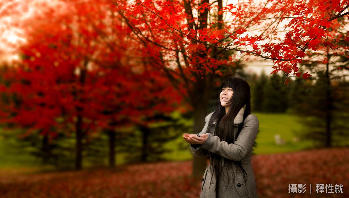 October: A Red Leaf for You